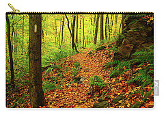 Carry-all Pouch featuring the photograph North Side Of Mount Greylock's At 2 by Raymond Salani III