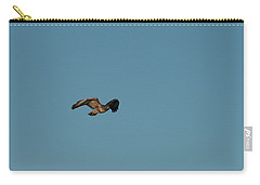 Carry-all Pouch featuring the photograph Northern Harrier In A Hurry by Jon Burch Photography