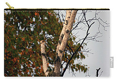 Carry-all Pouch featuring the photograph Northern Hawk Owl 101402 by Rick Veldman