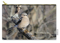 Northern Shrike Carry-all Pouch