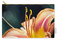 Orange Day Lily Stamen Carry-all Pouch