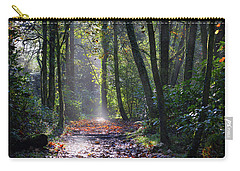 Penllergare 5 Carry-all Pouch