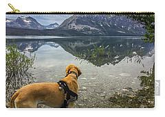 Carry-all Pouch featuring the photograph Photo Dog Jackson At Glacier by Matthew Irvin