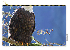 Portrait Of A Backlit Bald Eagle In Squamish Carry-all Pouch