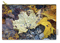 Carry-all Pouch featuring the photograph Rainy Autumn Day by Mike Murdock