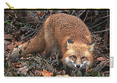 Carry-all Pouch featuring the photograph Red Fox Dmam0049 by Gerry Gantt