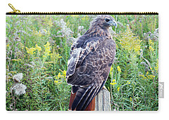 Carry-all Pouch featuring the photograph Red-tailed Hawk On Fence Post by Rick Veldman