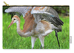 Sandy Crane Shows New Feathers Carry-all Pouch