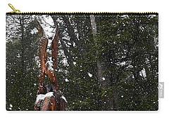 Sculpture Of Eagle In Villa La Angostura Carry-all Pouch