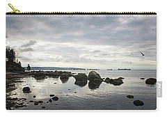 Seagull Seascape Carry-all Pouch