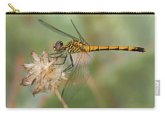 Seaside Dragonlet Carry-all Pouch