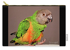 Senegal Parrot Carry-all Pouch