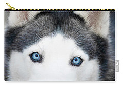 Carry-all Pouch featuring the painting Siberian Husky Mask A91818 by Mas Art Studio