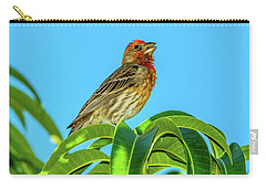Singing House Finch Carry-all Pouch