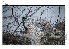 Singing The Song Of My People Carry-all Pouch