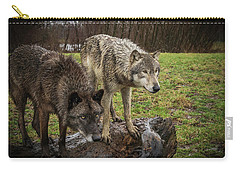 Sort Of Twins Carry-all Pouch