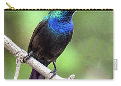 Splendid Iridescent Blue And Green Of The Male Palestine Sunbird Carry-all Pouch
