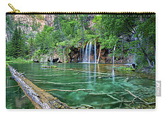 Submerged Log, Hanging Lake Colorado Carry-all Pouch