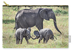 Sweet Babies Carry-all Pouch