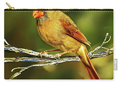 The Female Cardinal Carry-all Pouch