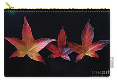 Three Amigos Or Amigas Carry-all Pouch