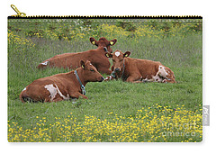 Carry-all Pouch featuring the photograph Three Cows by PJ Boylan