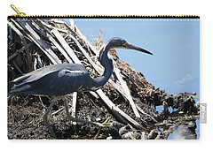 Carry-all Pouch featuring the photograph Tri-colored Heron 40312 by Rick Veldman