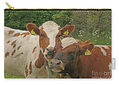Carry-all Pouch featuring the photograph Two Cows by PJ Boylan