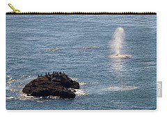 Carry-all Pouch featuring the photograph Whale Watching Yaquina Head Oregonn by Rospotte Photography