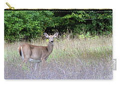 White Tale Deer Carry-all Pouch