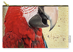 Who Is A Pretty Boy Then ? Carry-all Pouch