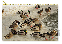 Wild Ducks Resting On Ice Carry-all Pouch