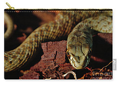 Wild Snake Malpolon Monspessulanus In A Tree Trunk Carry-all Pouch