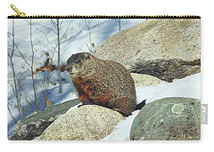 Winter Groundhog Carry-all Pouch