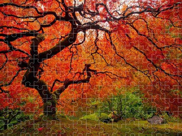 Oregon Jigsaw Puzzles