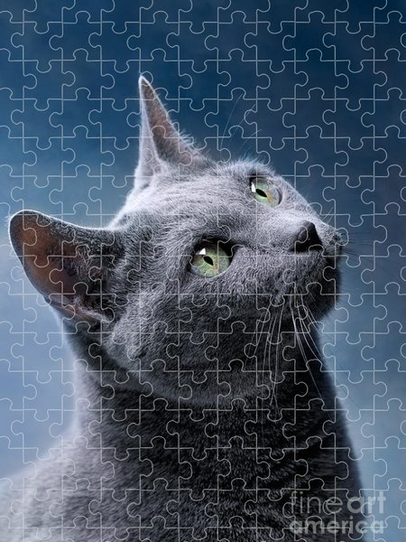 Russian Puzzles