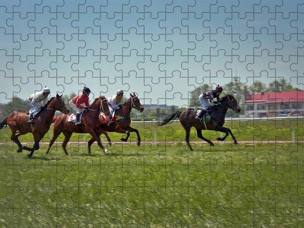 Jockeys Jigsaw Puzzles