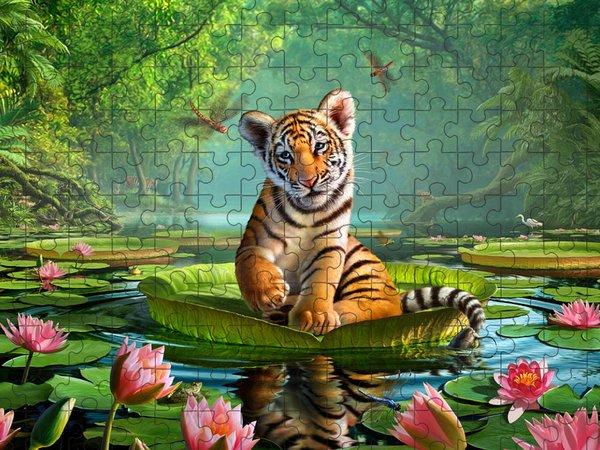 Marsh Puzzles