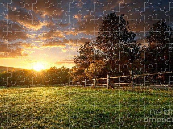 Flora Jigsaw Puzzles