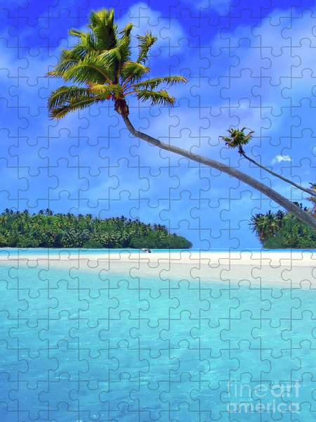 Fronds Jigsaw Puzzles