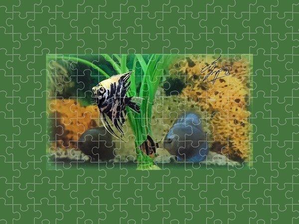 Animals Puzzles
