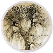 Bird Tree Fine Art  Mono Tone And Textured Round Beach Towel