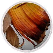 Dried Leaves Round Beach Towel by Michelle Meenawong