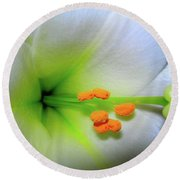 Round Beach Towel featuring the photograph   Easter A New Beginning  by Randy Rosenberger