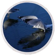 Round Beach Towel featuring the photograph  Landing On Icy Water by Emmy Marie Vickers