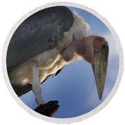 Maribou Stork Round Beach Towel