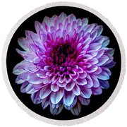 Round Beach Towel featuring the photograph  Purple On Black by Michelle Meenawong