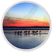Shorebird Sunset Round Beach Towel