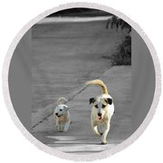 Two Of A Kind Round Beach Towel by Michelle Meenawong