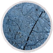 Vegetation After Ice Storm  Round Beach Towel by Daniel Reed